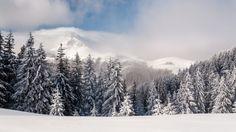 [Earth] Winter landscape from the Romanian Carpathians (Ciucas subgroup)