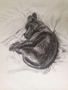 Arnie - charcoal June 2015 Charcoal, June, Animals, Art, Art Background, Animales, Animaux, Kunst, Animal