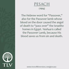 TLV Glossary Word of the Day: Pesach #tlvbible