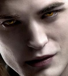 Edward Cullen from the Twilight series. I LOVE the books and enjoy the movies as well. Though I'm not really a fan of Robert Pattinson, he plays Edward well.