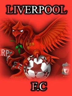 Liverpool FC Premier League Soccer, Barclay Premier League, Fc Liverpool, Liverpool Football Club, Best Football Team, Football Players, This Is Anfield, You'll Never Walk Alone, Best Club