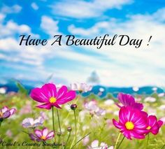 Have a beautiful day! via Carol's Country Sunshine on Facebook