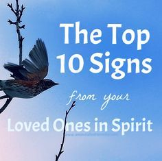 Wondering if you've been contacted with a sign from Spirit? Have a deceased loved one you'd like to connect with? These are the 10 most common ways they visit us ~ chances are, you've already experienced at least one! Reiki, Tarot, Signs From Heaven, Loved One In Heaven, Meditation, Life After Death, Spirit World, Yoga, Psychic Mediums