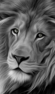 Iphone Wallpaper Black And White Lion Wallpaper Wallpaper4k Wallpaperhd Wallpaperiphone Wallpaperpc Wallpap Black And White Lion White Lion Lion Painting