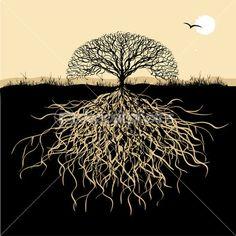 silueta de árbol con raíces — Ilustración de stock #1950502