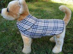 Dog clothes -