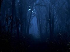 mysterious and inviting - just what will the night bring...