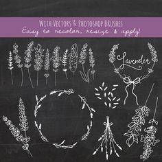 Lavender Sprigs Clip Art // Photoshop Brushes // by thePENandBRUSH Png Vector, Clipart Png, Vector File, Botanical Illustration, Digital Illustration, Branch Vector, Clip Art, Beauty Art, Beauty Makeup