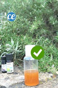 Vous voulez faire votre gel hydroalcoolique maison ? On a sélectionné pour vous 10 recettes pour fabriquer son gel antibactérien maison et se désinfecter les mains facilement. Ne vous inquiétez pas, ces recettes DIY sont faciles et efficaces pour tuer un large spectre de bactéries et de virus y compris le coronavirus. Voici la fabrication du #gelhydroalcoolique Jojoba, Aloe Vera, Essential Oils, Cleaning, Couture, Recipes, Crowns, Homemade Drain Cleaner
