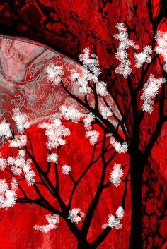 'Nature's Kingdom Asian Floral Print' Canvas Print by red addiction Red Aesthetic, Aesthetic Pictures, Tamamo No Mae, Red Wallpaper, Black White Red, Shades Of Black, My Favorite Color, Wall Collage, Japanese Art