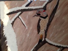 Northern Flicker based off the following photo a friend took. This photo isn't great because the whole canvas board is in shadow. I'll try to get a better one with more light.
