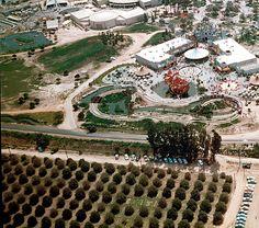 Disneyland & Orange Groves 1955