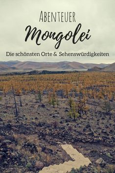 Unheimliches tipi mongolei