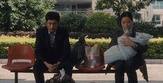愛的替身 - 電影詳情 :: 第三十七屆香港國際電影節