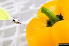 GRRRRREAT. The 7 Most Genetically Modified Foods. I have now lost my appetite. 12/3/13