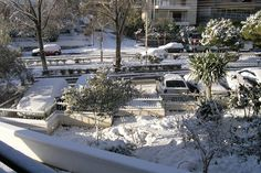 Snow on Athens Photo from Edem in Athens | Greece.com