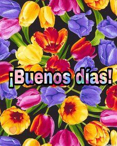 116 Melhores Imagens De Espanhol Espanhol Frases E Feliz