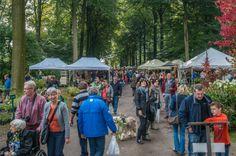 Wandel de herfst in op de Tuindagen in Beervelde Outdoor, Horta Vertical, Plants, Fall, October, Outdoors, Outdoor Games, Outdoor Living