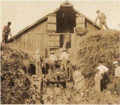 antique photo farmers farm kids and farm by vintagewarehouse, $3.00