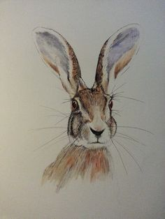 Hare portrait acrylic A3 by lesleyannspaintings on Etsy, £50.00