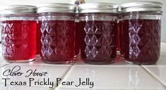 Have you ever had Prickly Pear Jelly? Well, I'… - Gelee Ideen Pear Jelly Recipes, Prickly Pear Recipes, Prickly Pear Juice, Prickly Pear Cactus, Jam Recipes, Canning Recipes, Apple Recipes, Canning 101, Recipe For Prickly Pear Jelly