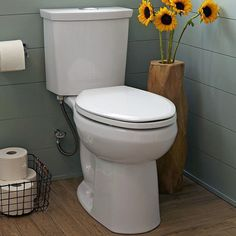 Conserve water and save money with every flush of our ultra-high-efficiency toilet. The PowerWash rim and EverClean surface ensures that your toilet stays clean making the a smart innovative and stylish choice. by american_standard Toilet For Small Bathroom, Brown Bathroom, Small Bathrooms, Best Faucet, Dual Flush Toilet, Water Efficiency, Bathroom Toilets, Garage Bathroom, Downstairs Bathroom