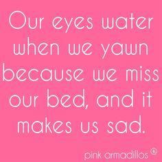 It's true. #MondayFeels #funny #humor #pinkarmadillos