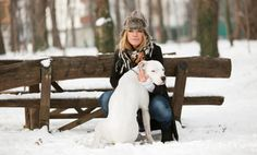 Tips for walking your pet in the winter.