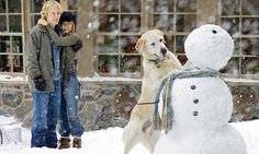 Jennifer Aniston, Owen Wilson, and Rudy in Marley & Me Marley And Me Movie, Turner And Hooch, O Rico, Pets Movie, Ugly Cry, Sad Movies, Saddest Movies, Owen Wilson, Movies Worth Watching