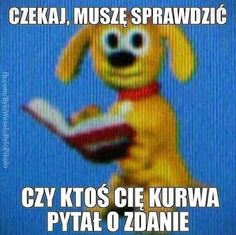 Funny Images, Funny Photos, Cute Pictures, Haha Funny, Funny Jokes, Polish Memes, Weekend Humor, Best Memes Ever, Cute Memes