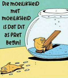 Die moeilikheid met moeilikheid Goeie More, Afrikaans Quotes, Truths, Tart, Funny Jokes, Classroom, Humor, Motivation, Kids