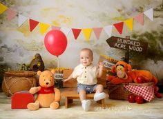 Photography Backdrops, Newborn Photography, Hundred Acre Woods, Newborn Photo Props, Birthday Photos, Baby Photos, Winnie The Pooh, First Birthdays, Toddler Bed