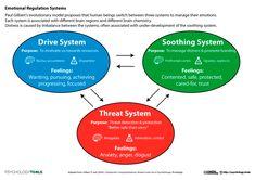 Emotional Regulation Systems