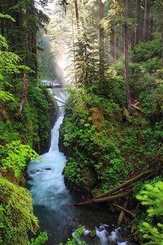 Sol Duc Falls, Olympic Peninsula, Washington State