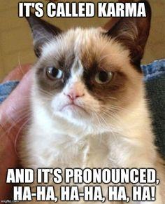 Grumpy Cat: Karma #humor #cats #grumpy