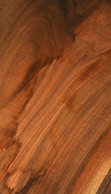 Beautiful crotch Walnut log with a few very clean slabs as well as a couple of rustic boards. It shows a great chocolate color and nice swirly grain patterns. Some slabs have figure around the knots. Select slabs even have good feathering through the crotch.
