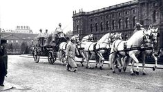 """Historic photo of Kladrubers harnessed to the Austrian imperial state-carriage, The coachmen and the rider are in winter attire. The driver and rider wear the bicorn hat sideways the others forward! The smaller building in the background is the former """"Hofstallungen"""" where about 200 horses were stabled during imperial times. Most of the carriage horses and campagne horses stud there. The beautiful Winter Riding School there still exists and is used as a theater right now."""
