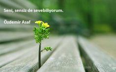 Özdemir Asaf Sözleri  Seni, sensiz de sevebiliyorum.