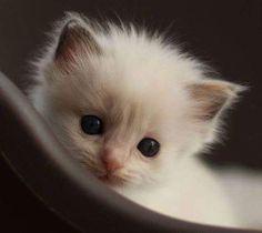 such a precious face...