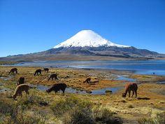 Parinacota Volcano Chile