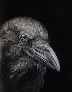 Crow Drawing - Possessed 1 by Ann Supan