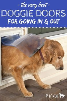 The Best Doggie Doors - Want an easy way to let your pooch out to potty? These doggie doors simplify life and give your dog backyard freedom. Some aren't too hard to install either - check them out! Dog Care Tips, Pet Care, Dog Door Mat, Pet Door, Best Dog Door, Dog Backyard, Dog Safety, Dog Owners, Dog Mom