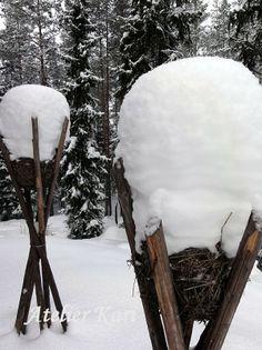 Atelier Kari naturdekorasjoner og kranser Snow, Winter, Places, Outdoor, Christmas, Atelier, Winter Time, Outdoors, Xmas