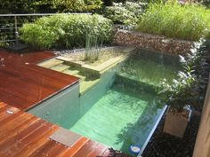 eco swimming pond exterior decking different levels