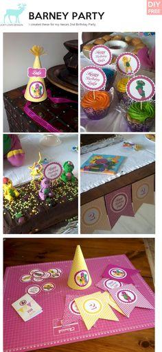 Laila's Barney Birthday Party