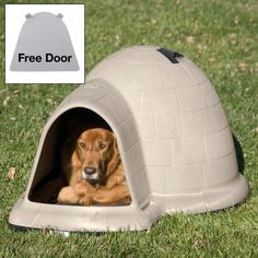 Petmate Indigo Dog House with FREE Dog Door ** Tried it! Love it! Click the image. (This is an amazon affiliate link. I may earn commission from it)
