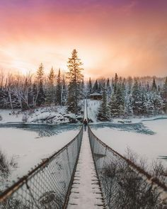 """919 Likes, 5 Comments - Canada Wonderful (@canadawonderful) on Instagram: """"Perhaps not that place you'd expect to see an epic suspension bridge, but you can find this beauty…"""""""