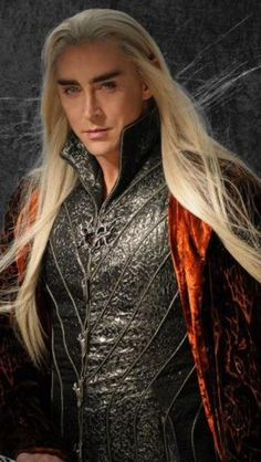 Day 29 challenge. Obviously Thranduil. He looked stunning. I just couldn't stop staring when i first saw him. :D