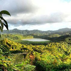 Grand Etang Lake Grenada, Beauty in the eyes of the beholder :) Pic source: Discover Grenada Grenada Island, Island Beach, Trinidad, Barbados, Puerto Rico, Grenada Caribbean, Cuba, Granada, Thinking Day