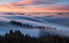 Awake in a Dream by Nicholas Steinberg